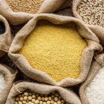 Cereales y Granos