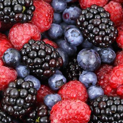 Fruta Procesada